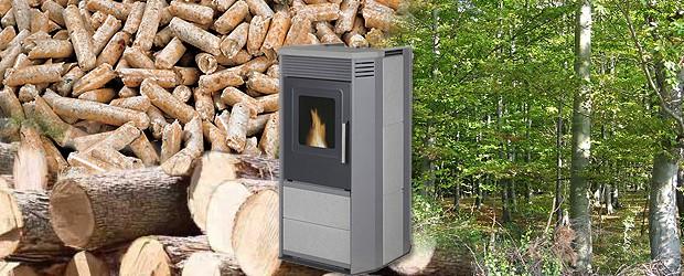 """Seit dem 05.12.2007 fördert die Bundesregierung die Anschaffung von so geannten Biomasseanlagen. Diese Biomasseanlagen sind allerdings besser bekannt als Holzpellets-Öfen oder -Kessel. Die Förderung findet im Rahmen des """"Marktanreizprogrammes (MAP) […]"""